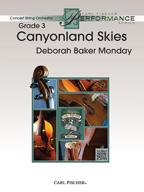 Canyonland Skies