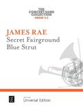 Secret Fairground & Blue Strut